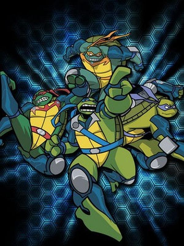 忍者神龟03年版