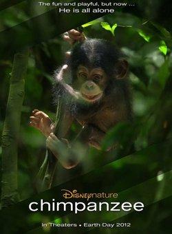 黑猩猩(超清)