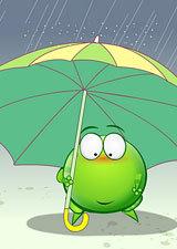 绿豆蛙情境动画