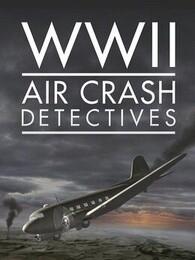 二战坠机调查