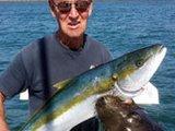 男子钓大鱼得意拍照 遭海狮偷袭