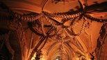 捷克教堂真稀罕,先人的遗骨都能摆出来随便看