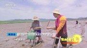 《生财有道》 20210914 生态中国沿海行——浙江宁海:海中寻味 泥里淘鲜