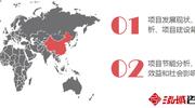 青海项目可行性研究报告 青海项目立项及投资分析说明