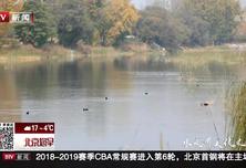 探访延庆区妫水河