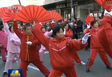 驻外使领馆举办活动 欢庆鸡年新春