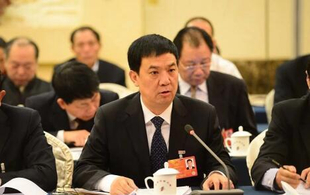 张龙安:精准扶贫苦于基层观念落后 希望实行以强带弱