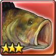 黑鲈鱼.png