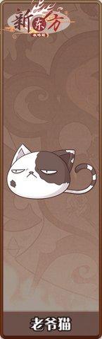 老爷猫.jpg