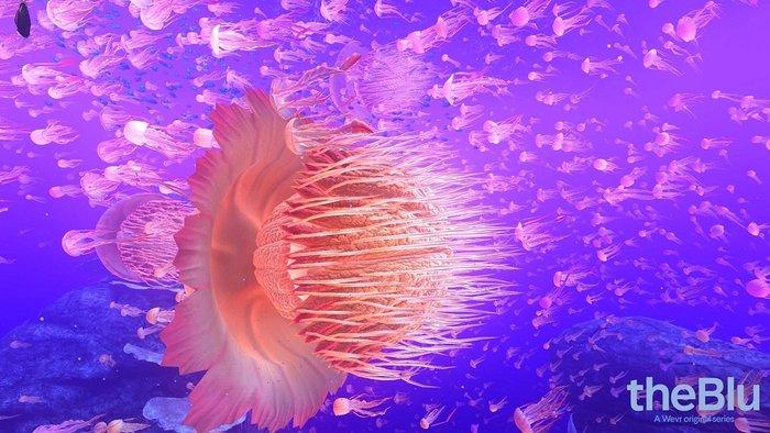 深海体验1.jpg