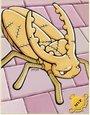 黄金虫卡片