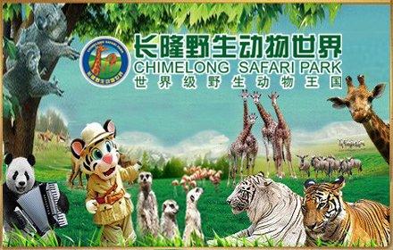 保护珍稀动物海报