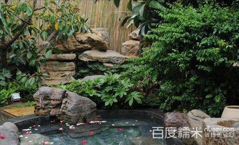 安宁店自助温泉+火锅菜品超值美食!丰富套餐,露天附近窑头路鱼图片