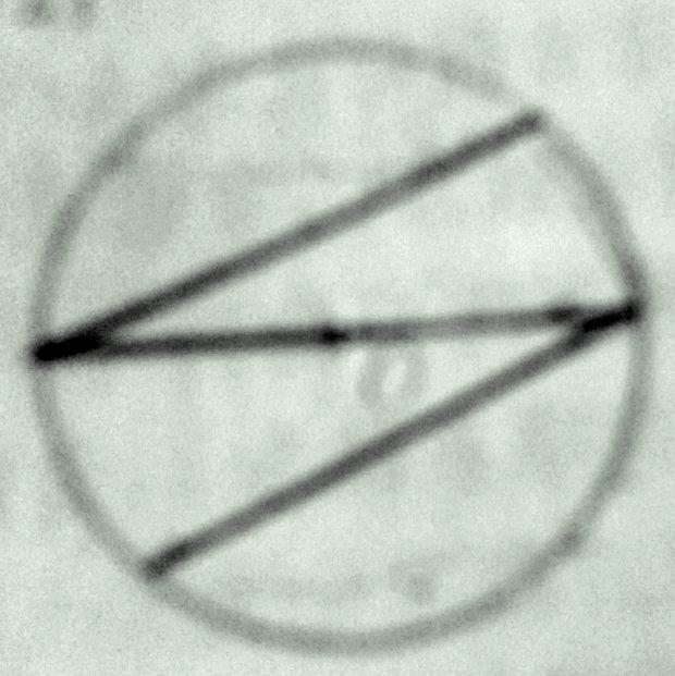 如图的方法,可否把一个圆的面积平均分成四份吗?证明一下.