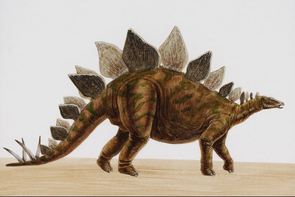 经典的恐龙电影有哪些图片