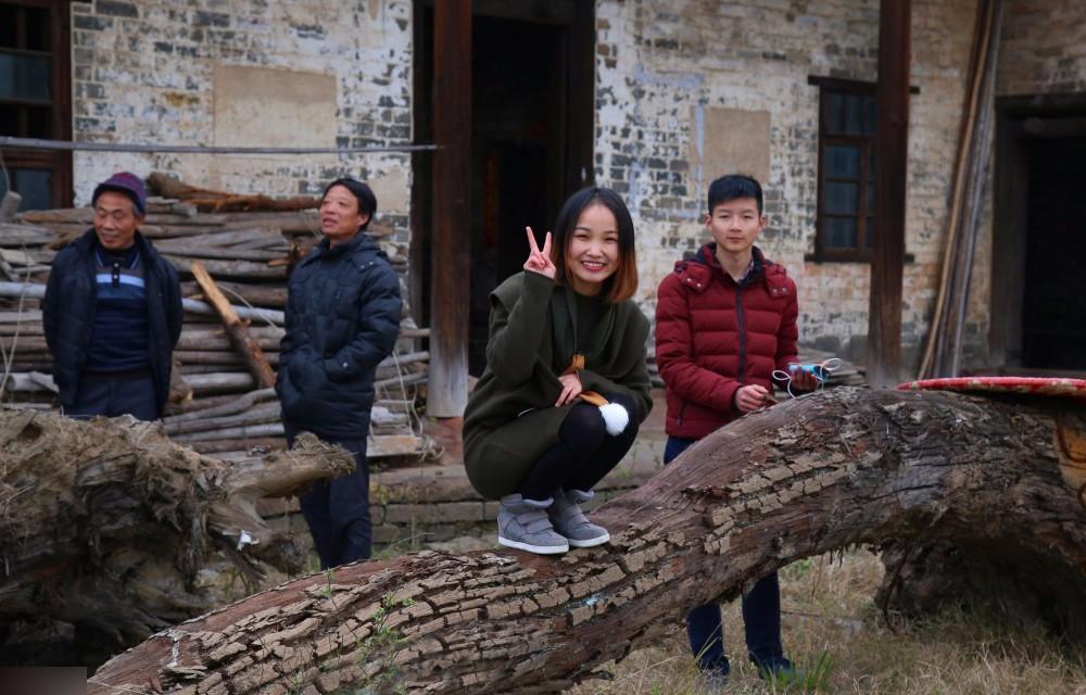 村民挖出两棵楠木树坐等升值 有人出价5万不卖