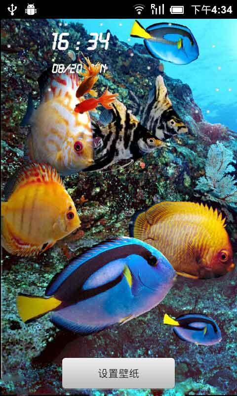 海底世界动态壁纸锁屏(来自:)