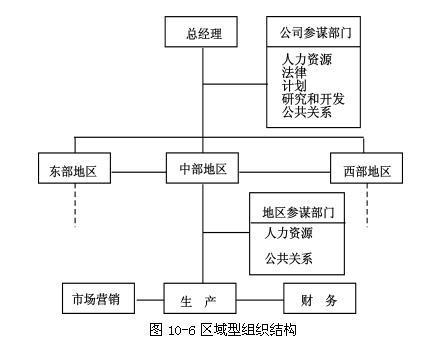 区域型组织结构