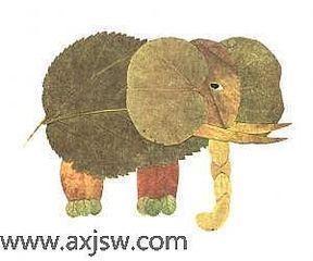 用植物的叶子拼成的各种各样动物的图片有哪些图片