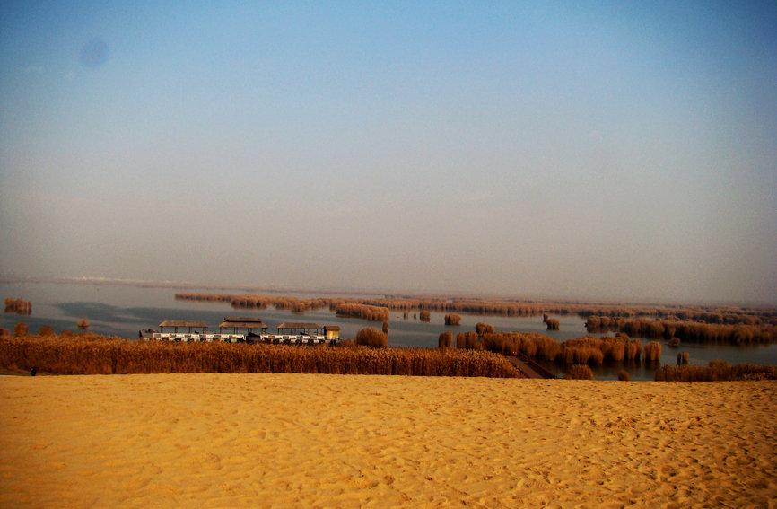"""匆匆忙忙赶往沙湖生态旅游区,这是我们今天的既定行程,也是第三站了。我们去宁夏沙湖生态旅游区的三大理由是从网上查到的,如同沙坡头一样诱人。理由1:独具特色的湖水、沙山、芦苇、飞鸟、游鱼的有机结合,中国绝无仅有的旅游胜地;理由2:融江南水乡之秀色与塞北大漠之雄浑为一体的""""旅游明珠"""";理由3:烟波浩渺的湖水,金黄如画的沙漠,娥娜多姿的芦苇,还有成千上万的鸟类。好在从西夏王陵过去路程仅有20余公里,很快就到了,时间定格在下午3时整。"""
