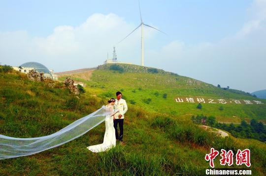 """""""日前,在湖北省宜昌市夷陵区百里荒景区,因当地""""以旅带农""""而受益的"""