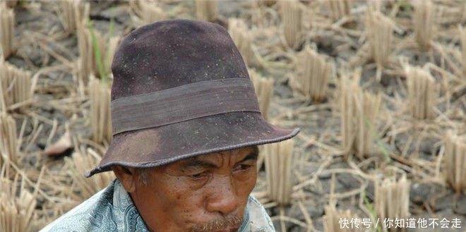 以后农村除了土地会值钱之外,两种东西也会升