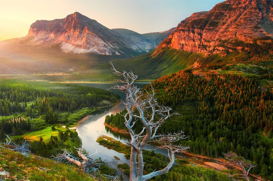 美国国家公园邀请玩家入园抓精灵