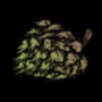 多汁的树的果实.png