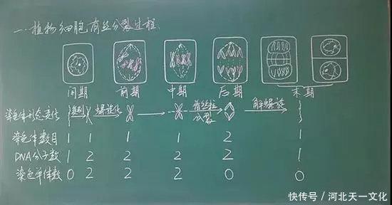 教师资格证面试板书6大要点!附各科优秀板书示