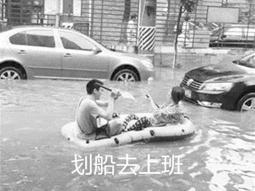 雨后网友去遛狗,到家后二哈。。
