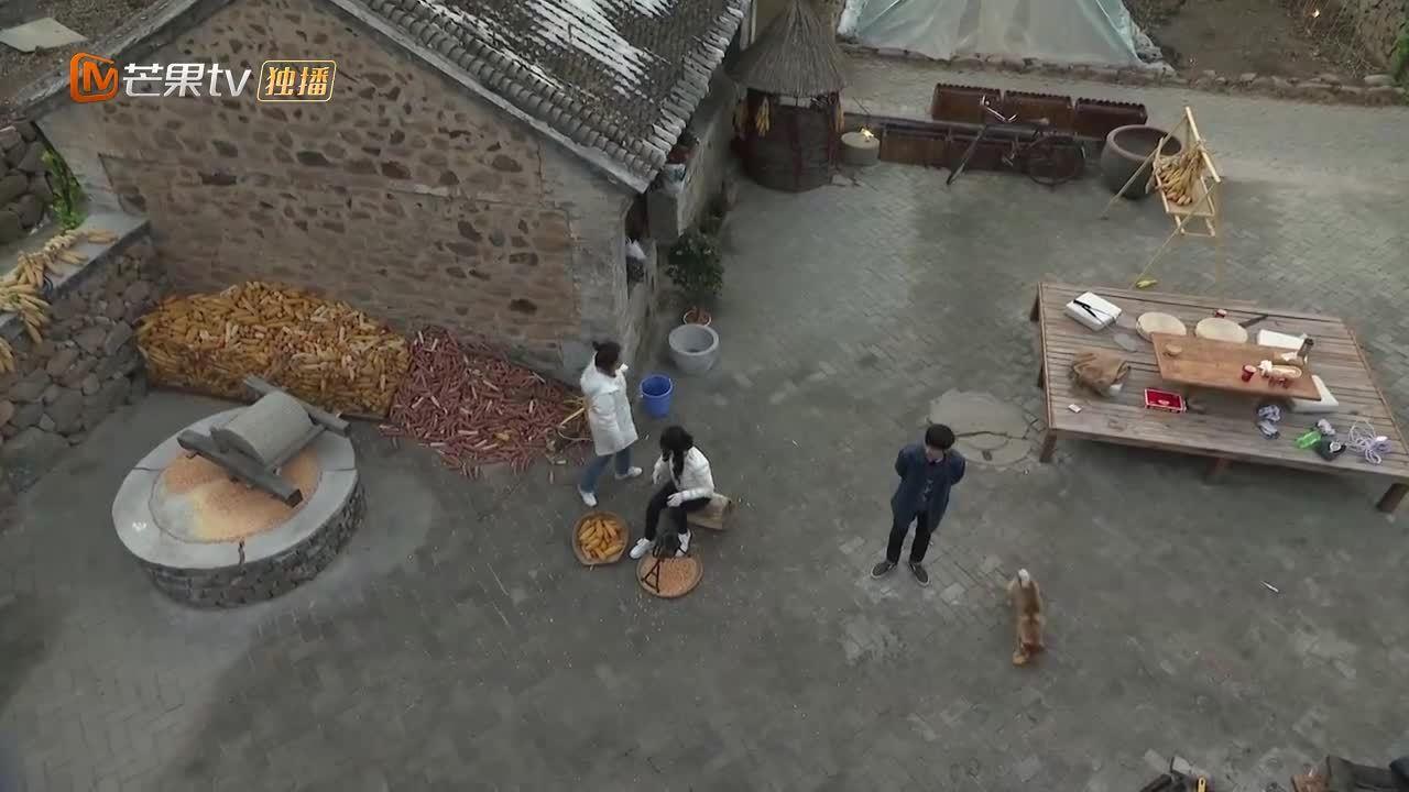 未播:赵丽颖神逻辑挑战节目组