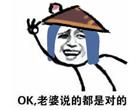 妻奴刘备表情包