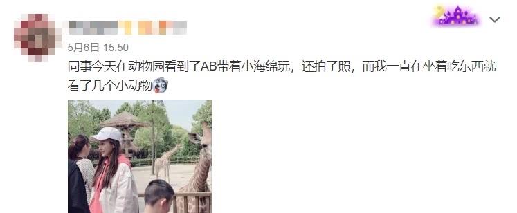 网友偶遇baby带小海绵逛动物园,大方与路人合影颜值超能打