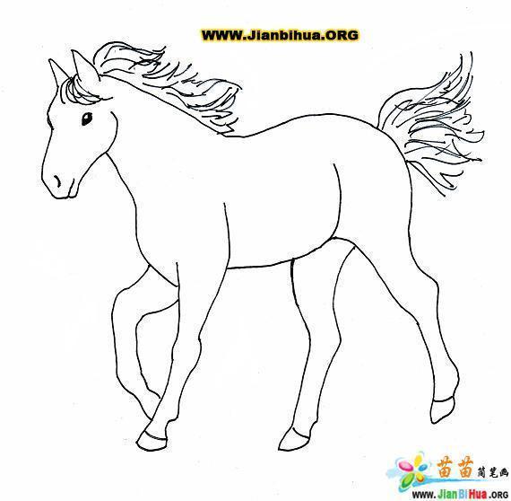 马怎么画图片