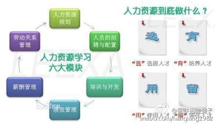 六大步骤规划图