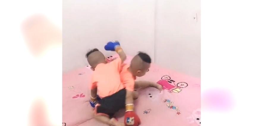 <b>双胞胎儿子互相打拳击,接下来的表现,真是笑到我肚子疼</b>