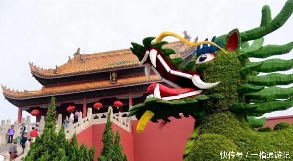 龙亭菊花节满城尽带黄金甲