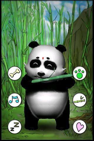 会说话的熊猫截图3
