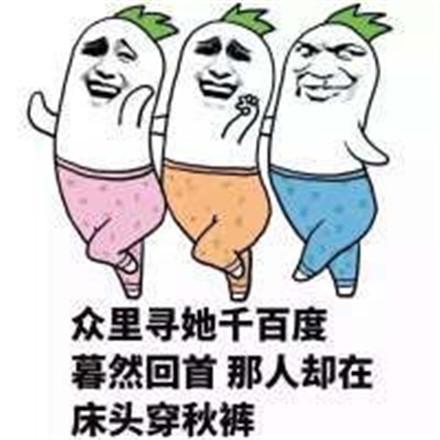 秋裤表情包5.jpg