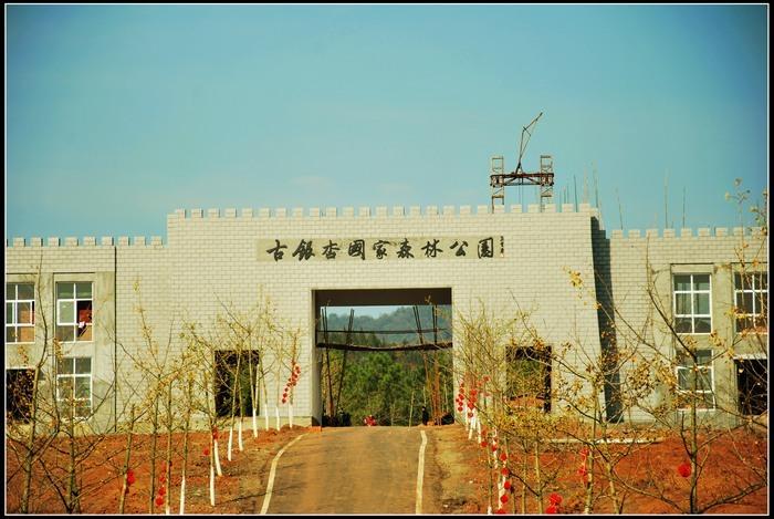 安陆河西新区规划图