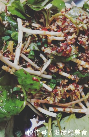美食推荐:7道美味的家常菜凉拌菜,每道菜都能一大盘上桌就抢光