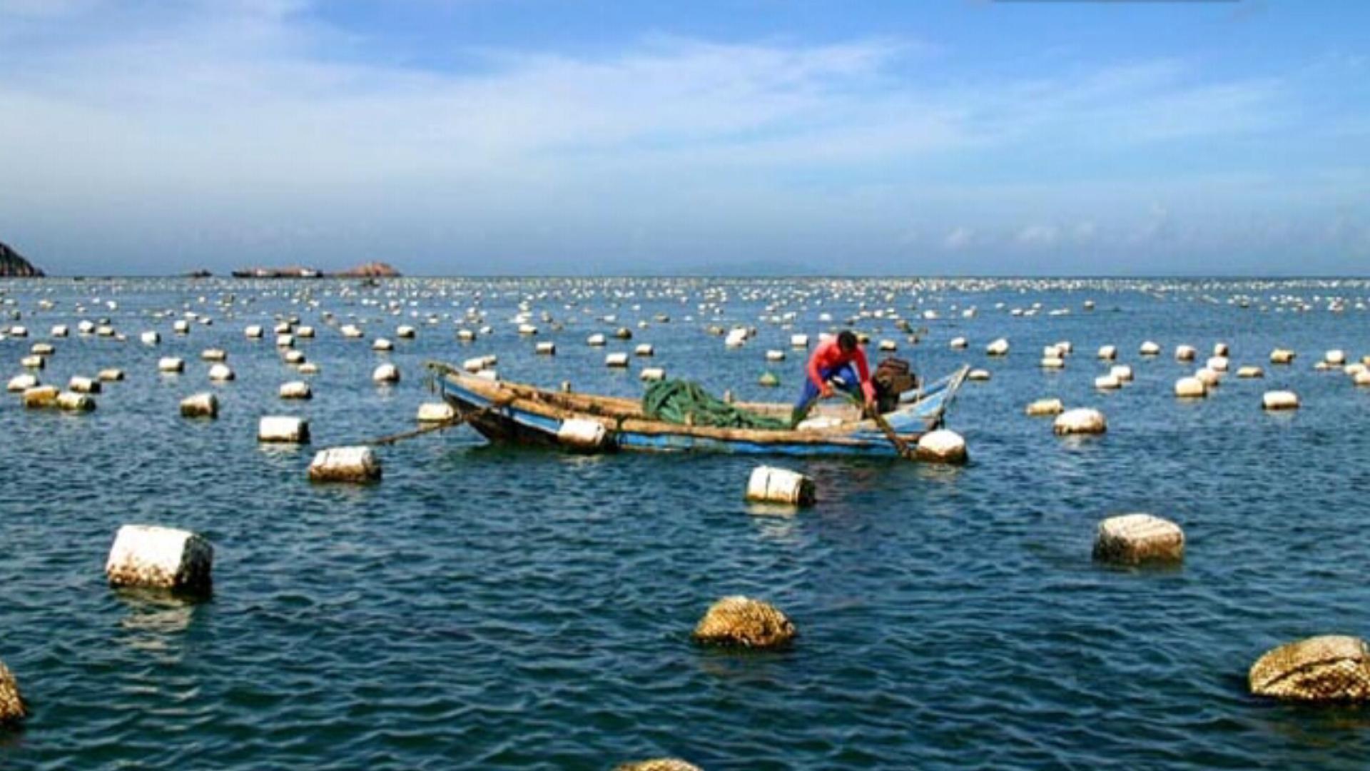 釣魚島上的自然資源