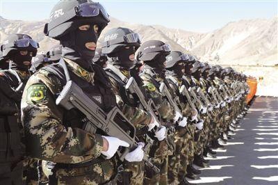 这些部队是列入武警序列由公安部门管理的部队,包括边防部队,消防