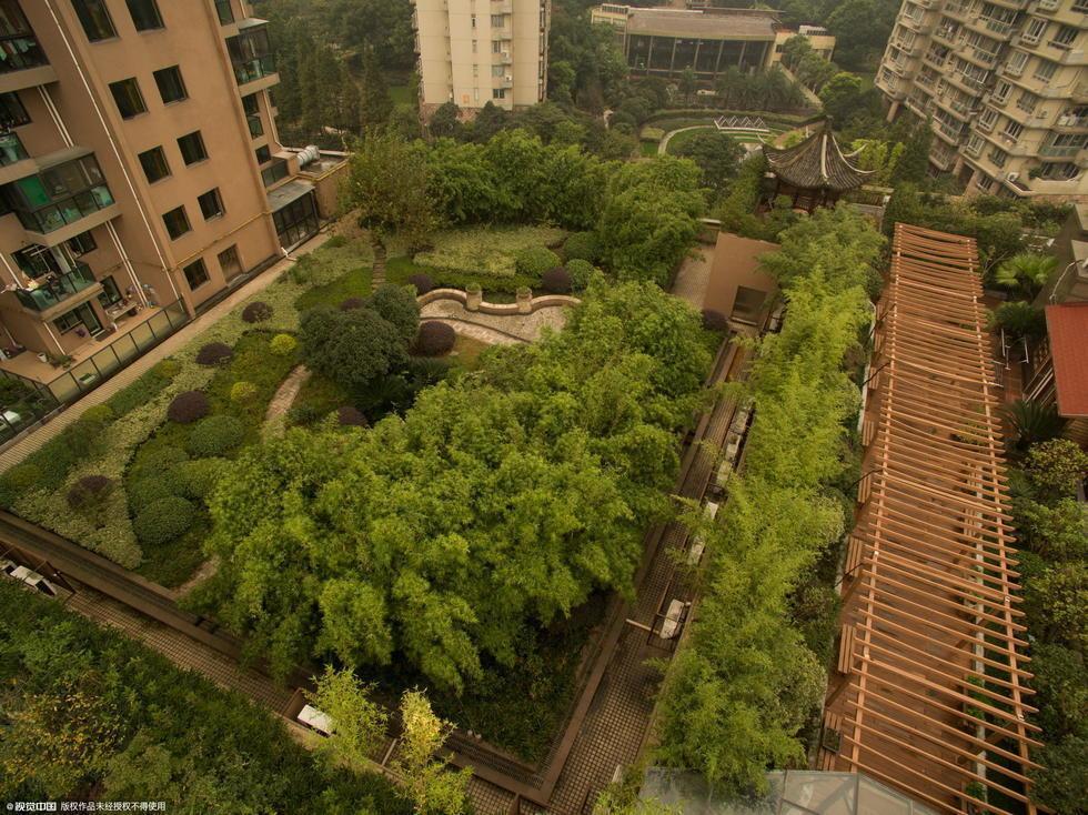 """这座杭州""""最牛空中花园""""被城管拆了"""