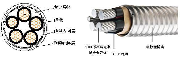 铠装电缆是由不同的材料导体装在有绝缘