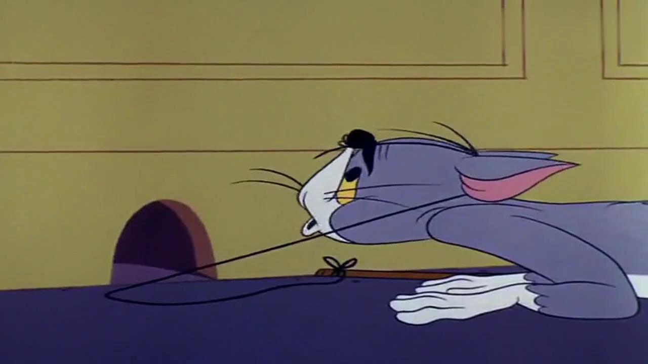 猫和老鼠:猫给老鼠剪毛,给杰瑞剪个比基尼