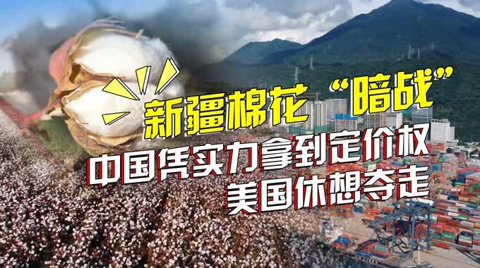 联合打压新疆棉花:中国凭实力拿到的定价权,美国休想夺走!