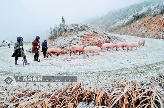 广西桂林全州县地图 广西省全州县地图