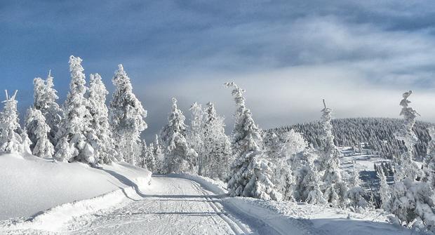 描写冬天景色的诗句有哪些