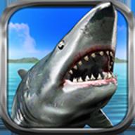 饥饿的鲨鱼猎人 - 3D游戏